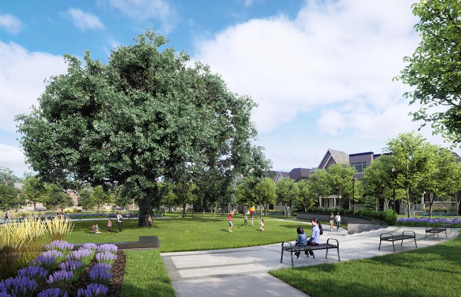 Rendering of Union Village communal space around the preserved Bur Oak tree.
