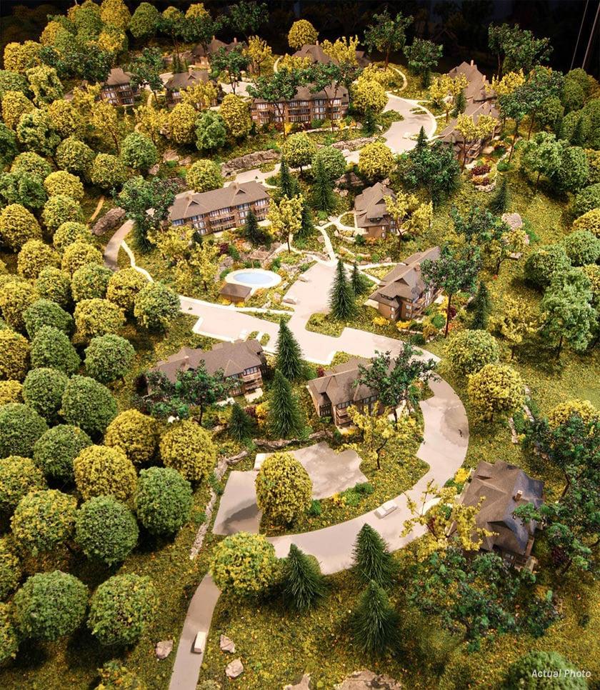 Treetops Condos aerial view